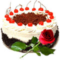 Mouth-watering Black Forest Cake along with a charming Red Rose to Gurgaon