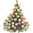 Attractive bouquet of 30 blushing peach or Pink Roses to Palampur