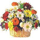 Resplendent Seasonal Flower Basket to Gurgaon