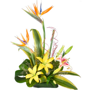 Exotic Flowers - Office Arrangement  to Adilabad