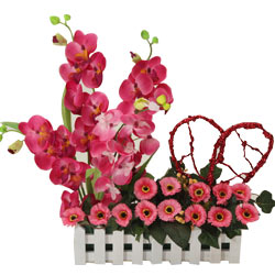 Long Lasting � Excellent Orchids n More to Tiruvallur