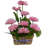 Rhythm Divine Long Lasting Gerbera Arrangement to Anantapur