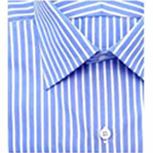 Sophisticated half Shirt from Arrow in Blue and White Stripes to Palladam