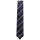 Elegant Tie from Arrow to Barrackpore