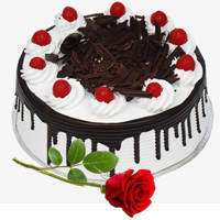 Bright Red Rose with Eggless Back Forest Cake to Amlapuram