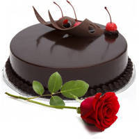 Fresh Red Rose with Eggless Chocolate Cake to Aurangabad
