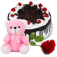 Ultimate Happiness Combo of Red Rose with Teddy N Black Forest Cake to Jaipur