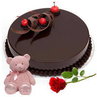 Satisfying Fresh Chocolate Cake with Teddy N Single Rose to Bulandsher