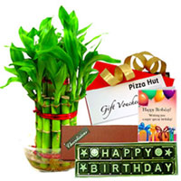 Remarkable Handmade Chocolate with Pizza Hut Voucher, Bamboo Plant N Birthday Card to Patna