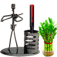 Chic Combination of Parker Pen with Stand N Bamboo Plant to Bahadurgarh