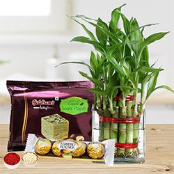 Eco Friendly Assortment Gifts to Aligarh