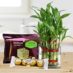 Eco Friendly Assortment Gifts to Alapuzha
