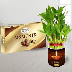 Delicious Ferrero Rocher Chocolate n Personalized Diwali Coffee Mug with 2 Tier Lucky Bamboo Plant to Varanasi