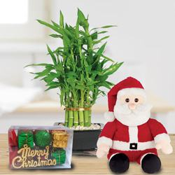 Special Gift of 2 Tier Bamboo with Santa Teddy to Aleppy