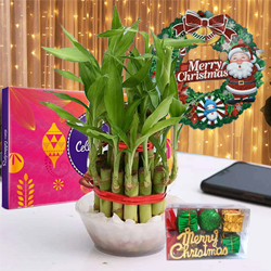 Captivating Gift of Lucky Bamboo, LED Light, Cadbury Celebration n Wreath to Adugodi