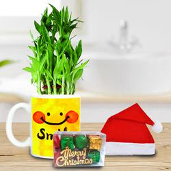 Marvelous Plants Gift Hamper to Allahabad