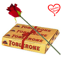 Toblerone Swiss with One Velvet Red Rose. to Raipur