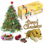 Gorgeous Assortment of Christmas Gift Items to Allahabad