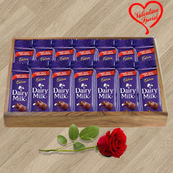 Cadbury Dairy Milk with a Red Rose for your Valentine to Yamunanagar