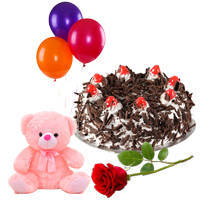 Lovely Single Rose with Teddy, Balloons and Black Forest Cake for Birthday to Ajmer