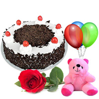Anniversary Grace Single Rose with Black Forest Cake, Teddy and Balloons Combo to Gurgaon