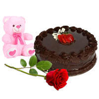 Bright Red Rose with Teddy N Chocolate Cake to Trichur