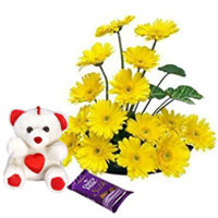 Loving Hug Combo of Yellow Gerberas Arrangement, Teddy N Dairy Milk Silk to Berhampur