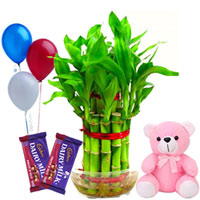 Good Luck Gift Hamper to Aurangabad