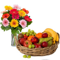 Bunch of Mixed Gerberas in a Vase with Fresh Fruits Basket to Ajmer