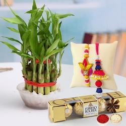 Delicious Ferrero Rocher Chocolate with Lucky Bamboo Plant n Bhaiya Bhabhi Rakhi to Akola