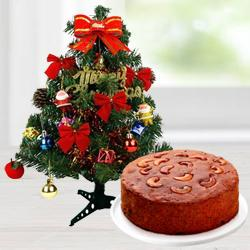 Christmas Tree N Cake to Allahabad