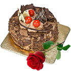 Fresh Baked Chocolate Cake N Rose- Midnight Delivery to Ghaziabad