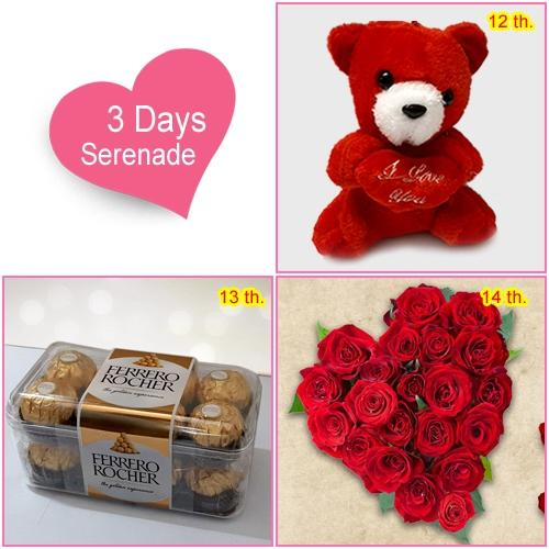 3 Day Serenade for Love of your Life to Amalampuram