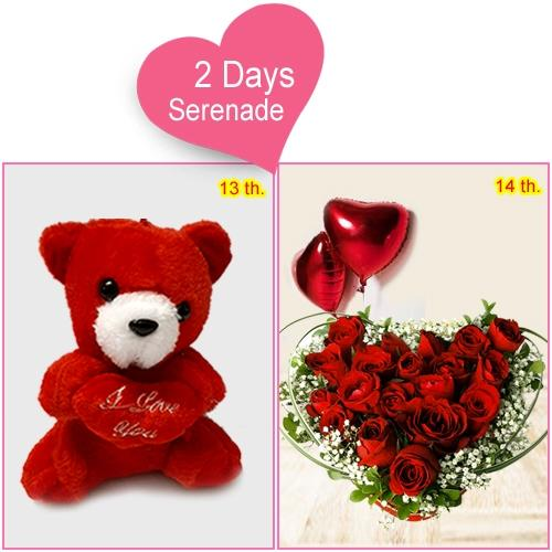 2 Day Serenade for your Dream Girl to Amalampuram