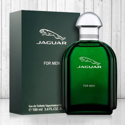Attractive Jaguar Green 100 ml Mens Perfume to Banswara