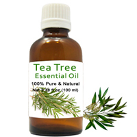 Vibrant Selection of Healthy Tea Tree Essential Oil to Varanasi