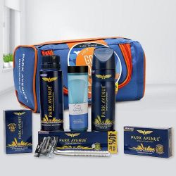 Remarkable Park Avenue Grooming Kit to Aluva