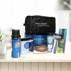 Marvelous Park Avenue Mens Essential Kit to Adoor