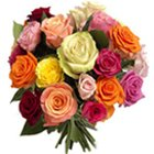 Attractive 24 colorful mixed Roses to Sodepur