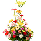 Charming bouquet of mixed Flower arrangement to Mysore