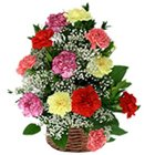 Gift a Basket of bright mixed Carnations to Noida