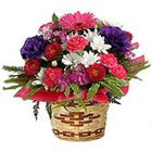 Fresh Flowers Bouquet with Ferrero Rocher Choclate Box to Allahabad