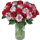 Stunning bunch of fresh Roses and Carnations  to Jalandhar