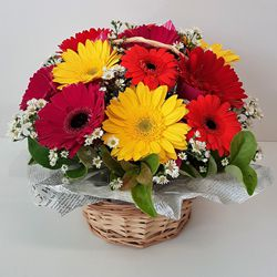 Stunning mixed Gerberas  to Mysore