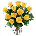 Bright charming 12 Yellow Roses and a Vase to Bangalore
