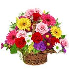 Exquisite colourful mixed Flowers in a basket to Bangalore