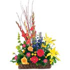 Attractive arrangement of various colorful Flowers to Delhi