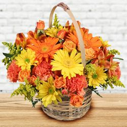 Fantabulous Seasonal Flowers to Noida
