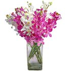Pretty multiple Orchids in Vase to Calcutta