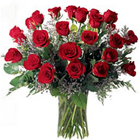 Glorious 40 Red and White Roses to Rajkot
